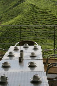 3 Cameron Highlands s